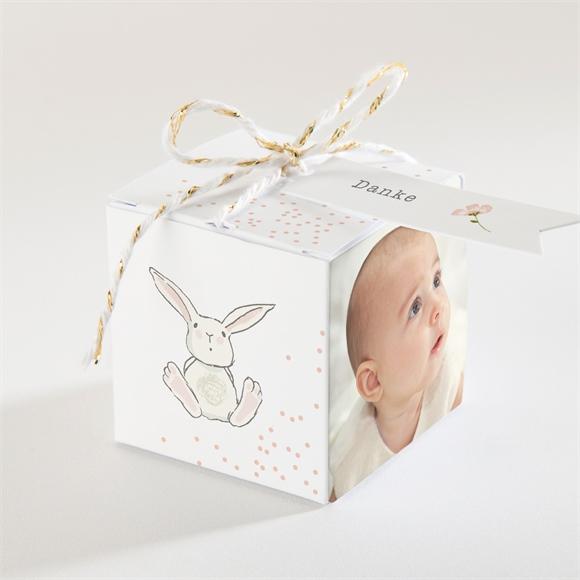 Zuckermandel Schachtel (Taufe) Kleine Kaninchen-Taufe réf.N340340
